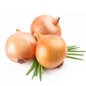 Phoenix F1 Yellow Onion